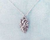 Sterling Silver Anatomical Heart Necklace or Golden Real Heart