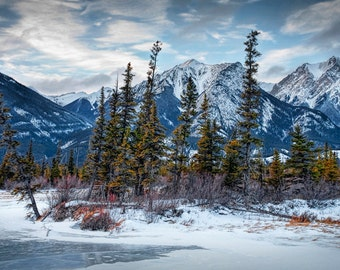Mountain Range and Pine Tree Grove at the edge of a Lake in Jasper National Park in Alberta Canada No.0312 - A Panorama Landscape Photograph