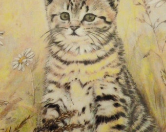 Vintage Kitten Classics Tigers Fancy Collector Plate