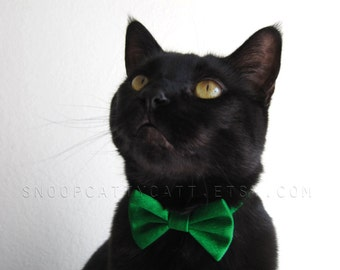 Cat Bow Tie - Lucky Leprechaun