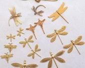 Large Dragonfly Collection (15pc)