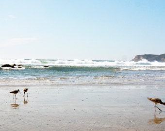 Southern California beach print, Southern California beach canvas, sandpipers photo, beach photo