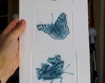 Butterfy print. Red Admiral, Peacock, Comma. Limited edition fine art drypoint