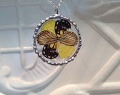 Real Butterfly Wings between glass Hand Soldered Pendant Collection Real Butterfly Wings Christmas Birthday Gift Statement Necklaces