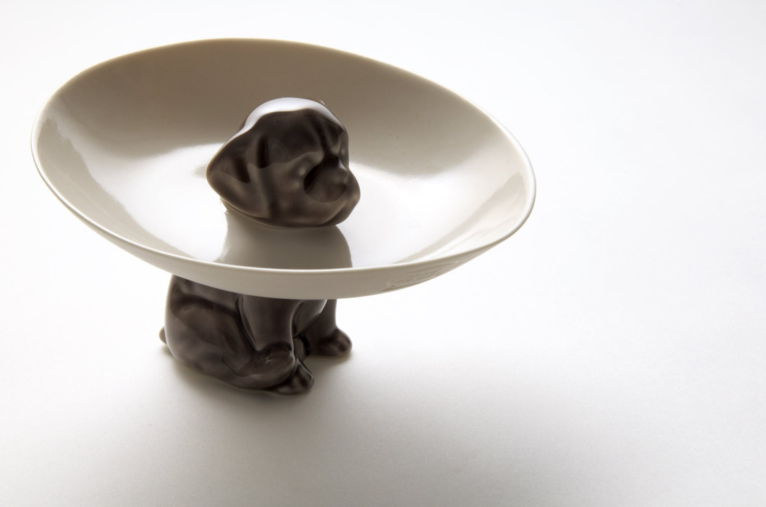 Uncategorized Cute Dog Bowl the dog bowl porcelain held up by a cute dog