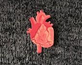Heart Brooch Shrink Plastic Anatomical Anatomy Organ