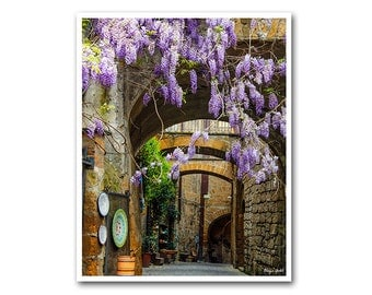 Rustic urban photography with Purple wisteria in Tuscany Italy- travel photography