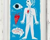 midcentury print 50's typographic modernist minimalist poster anatomic plate human body chart