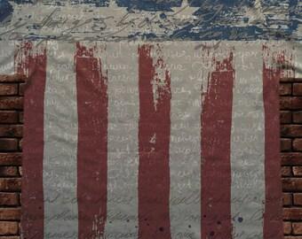 U.S. Flag T-Shirt(88)