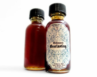 Infused Honey- Echinacea Everlasting. Herbal Honey Elixir: 1oz. Immunity. Cold & flu.