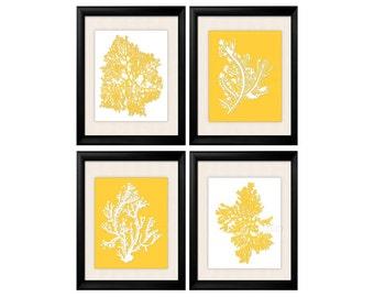 Yellow Wall Art, Yellow Coral Print, Yellow Beach decor, Modern Beach House, Yellow White Coral Prints, Yellow Botanical, Yellow White Art