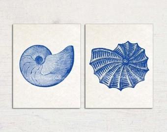 Mollusks, Blue Seashell Prints, Antique Seashell Illustrations, Mollusks, Seashell Print Set, Blue White