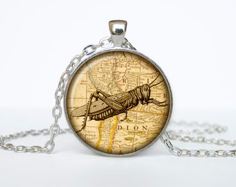 Grasshopper necklace Insect necklace bug pendant Victorian England jewelry beige black brown