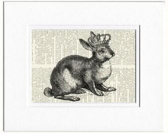 rabbit princess print