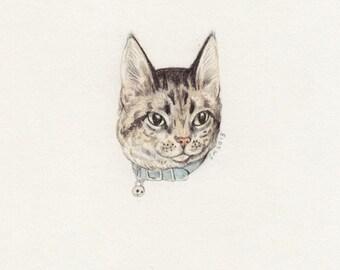 Mini Pet Portrait