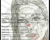 Items similar to Body    Piercing       Diagram     Facial    Piercings       Diagram     11  x 14  on Etsy