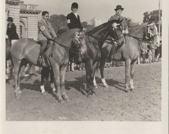 Champ and Reserves - Vintage 1960s Prizewinning Equestrians and Show Horses Photograph