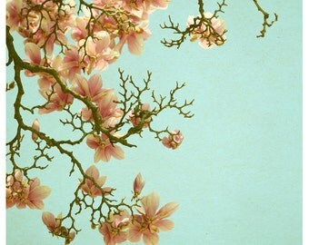Flower Photograph - Nature Photography - Pink Spring 3 - Magnolia Tree - Bloom - Fine Art Photography - Pink - Light - Blue Sky