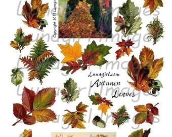AUTUMN LEAVES digital collage sheet Vintage images Victorian woodland altered art Fall ephemera seasons leaf printables cards DOWNLOAD