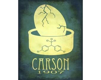 24x36 Rachel Carson Science Art Print - Rock Star Scientist Marine Biologist, Environmental Green Movement, DDT Eggshells, Biology Art