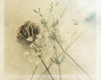 Polaroid Photography Blue Wildflowers 8x8 Photo