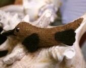 Myrik the Duckbill Platypus
