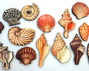 Sea Shells - Collection of 15 Laser Cut Wood Craft Pieces