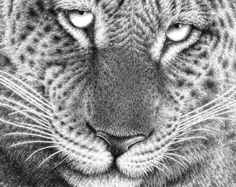 A4 Giclee Fine Art Print of a Leopard, Wildlife Art Gift, Big Cat, Animal Illustration, Picture, Wall Art Print
