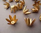 12 Bead Caps - Raw Brass Floral Pointy - Flower Stampings (6)