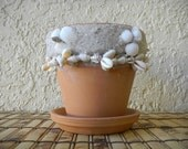 "Terra Cotta Plant Pot with Seashells, 4"" Planter"