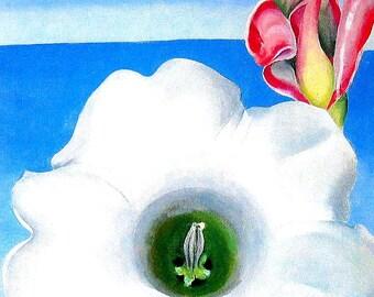Belladona - Georgia O'Keeffe Flower Print - 1990 Vintage Book Page - 8.5 x 11