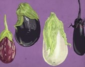 Illustrated Eggplants - Boxed Set of 8 cards
