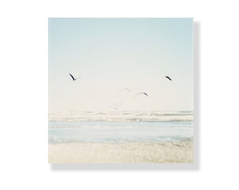 Beach Photo Canvas Gallery Wrap, beach decor, pale blue, seagulls, sand, sea, beach photography, beach photo canvas art - A Faded Flight