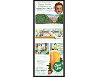 Green Spot OJ Orange Citrus Fruit Vegan Advertising Wall Art Decor E103