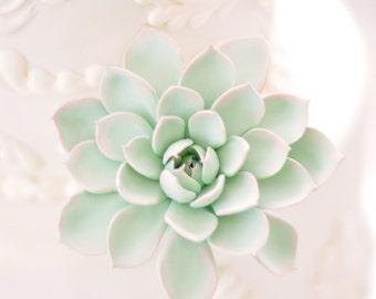 Made to Order - Mint and Peach Succulent Cake Flower