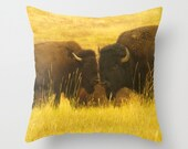 Buffalo Love Pillow Cover Bison Countryside Pillow Woodland Range Forest Lovely Decor Buffalo Bison Grassy Field