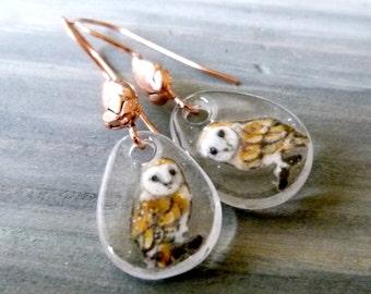 Barn owls - fused glass owl earrings