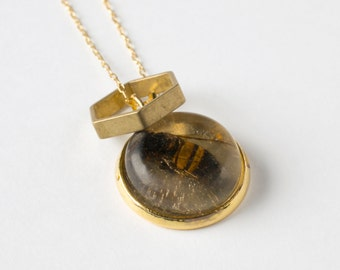 Real Bee Necklace - Honeybee Jewelry - Specimen Jewelry - Natural History - Biology Jewelry - Gold Bee