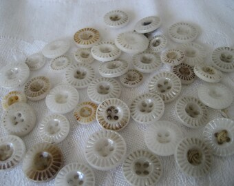 Lot of 40plus ANTIQUE White China Pie Crust BUTTONS