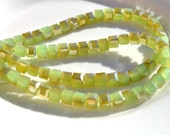 Pale Celery Green Celsian 4mm Cube Crystal Beads   20