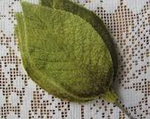 Millinery Velvet Leaves Czech Republic 6 Embossed Green Ombre Velvet Leaves  NLC 109 GR
