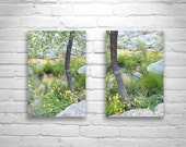 Floral Wall Art, Spring Yellow and Green Wall Decor, Diptych, Nature Photography, Fine Art Photography, Floral Print, Sycamore Canyon