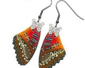 Real Butterfly Wing Earrings (Biblis Forewing - E058)