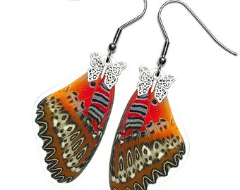 Real Butterfly Wing Earrings (Biblis Forewing - E058)
