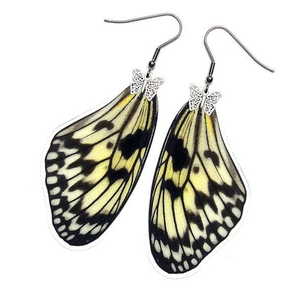 Real Butterfly Earrings (Leuconoe Forewing - E089)