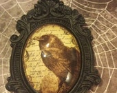 Vintage Raven set on a Baroque setting  behind a 40x30 glass necklace,pendant Halloween