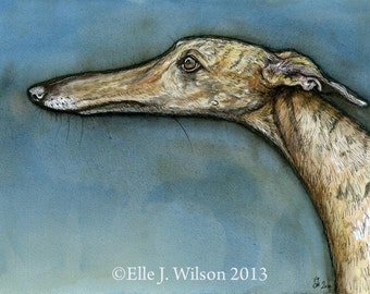 A Little Guiltless -  Greyhound Art Dog Print