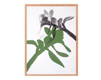 screen print – botanical print series, green & black