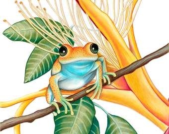 Bright-eyed Frog Print