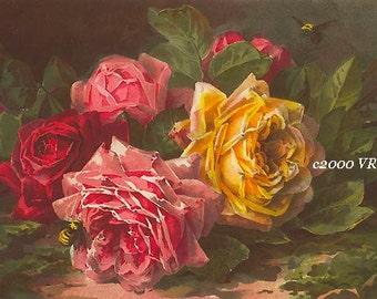 Victorian Summer Roses Print Paul de Longpre Half Yard Long Bees
